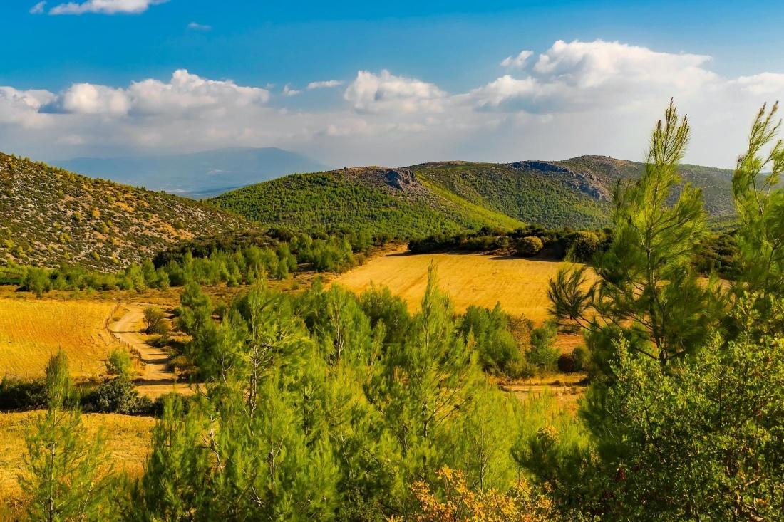 nature, landscape, sky, grass, field, summer, hill