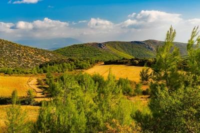 Natur, Landschaft, Himmel, Rasen, Feld, Sommer, Hügel