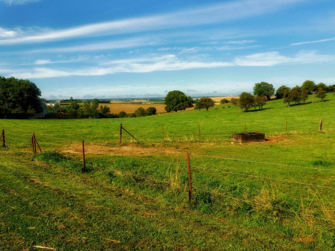 landscape, agriculture, grass, farm, rural, nature, tree, field, countryside