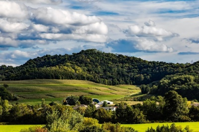 landscape, nature, tree, rural, sky, countryside, agriculture, hill