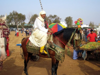 people, cavalry, festival, ceremony, man, costume, religion