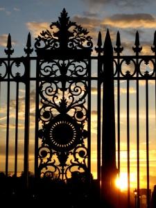 puerta, decoración, hierro, arquitectura, cerca, viejo, diseño