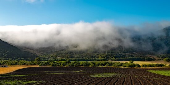 landscape, agriculture, nature, farm, sky, field, rural, countryside
