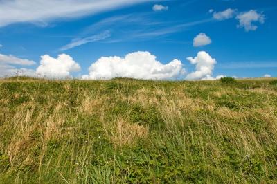 græs, landskab, felt, natur, himmel, landdistrikter, eng, græsarealer