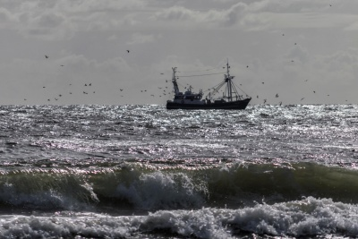 sea, water, ocean, watercraft, ship, storm, seashore, boat