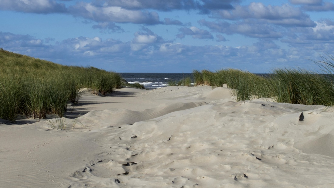 beach, sand, seashore, landscape, nature, shore, coast
