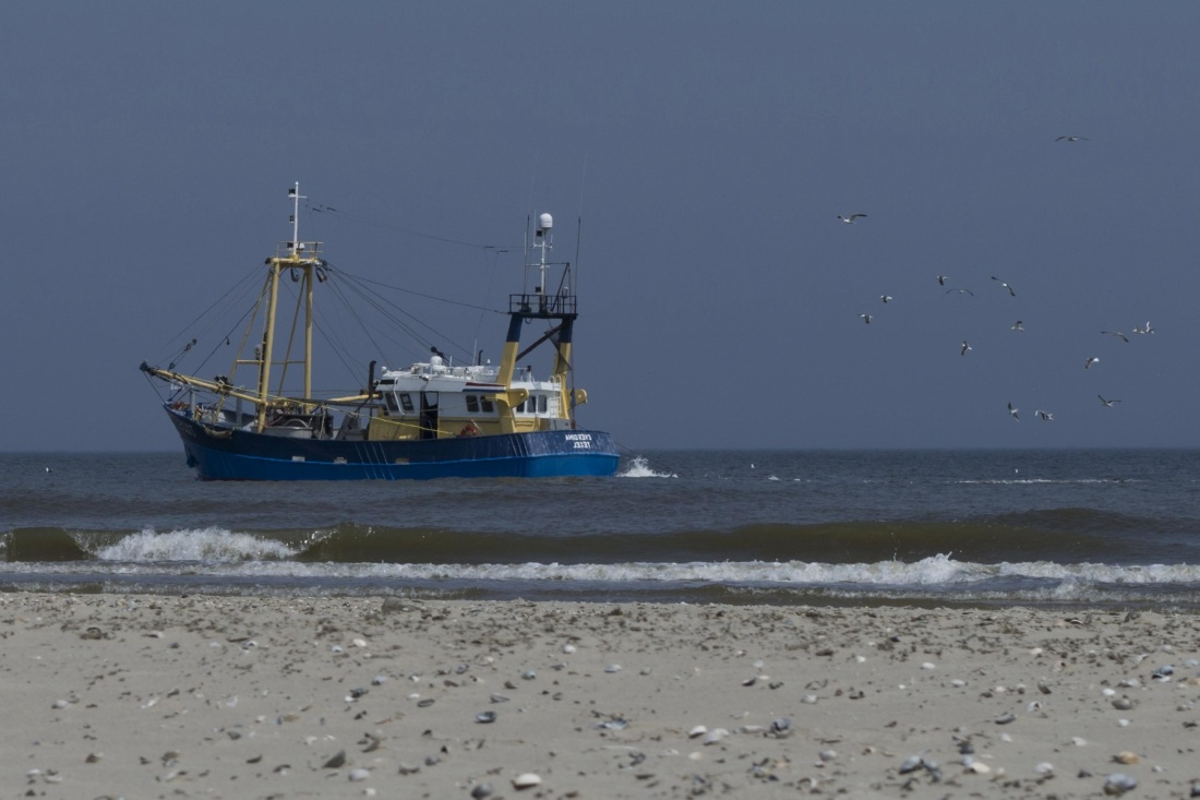 sea, water, ocean, seashore, beach, watercraft, ship, boat