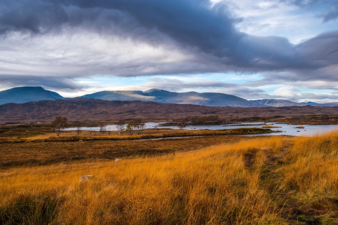 landscape, sunset, sky, nature, field, land, grass, rural, meadow