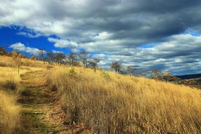 τοπίο, ουρανός, φύση, το πεδίο σιτάρι, γρασίδι, αγροτικές, Λιβάδι, λόφος