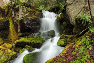waterfall, water, stream, river, wood, nature, moss, creek, leaf