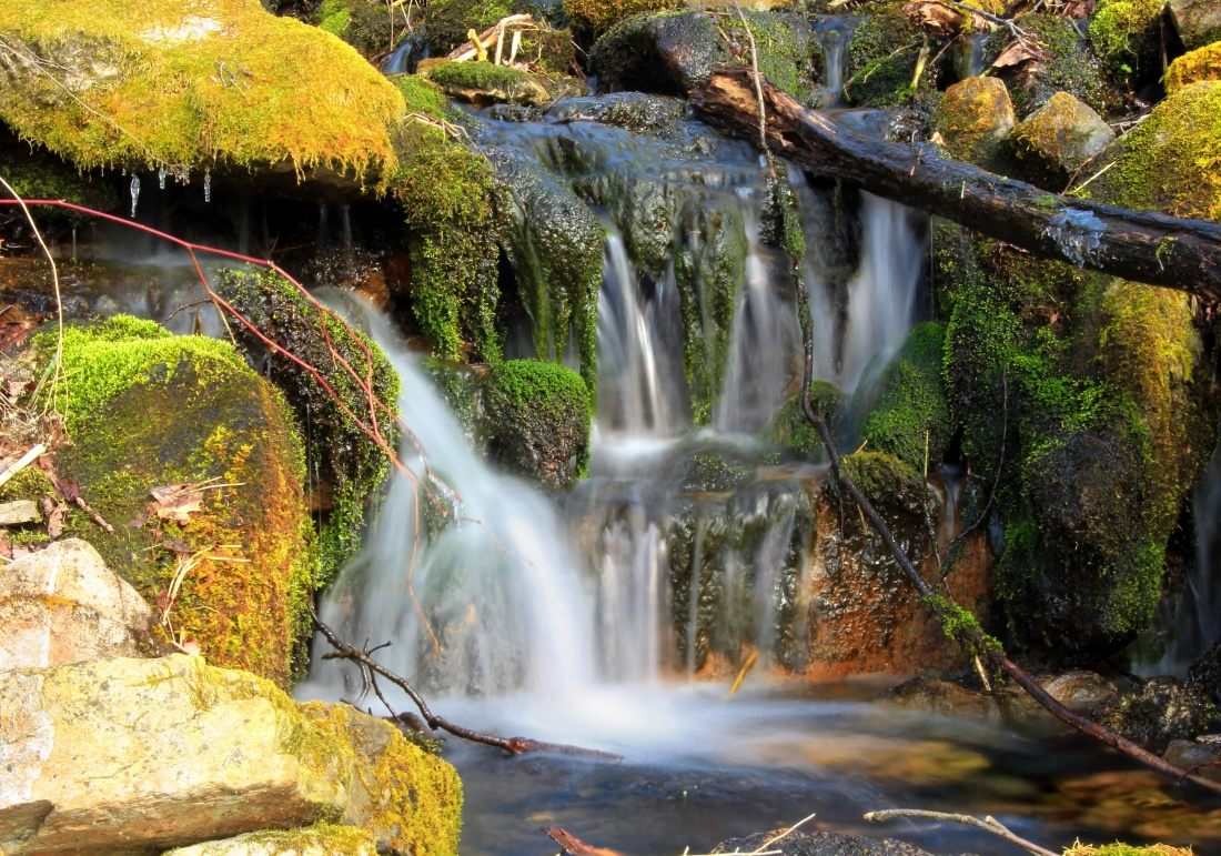 waterfall, water, stream, river, wood, creek, nature, leaf, moss