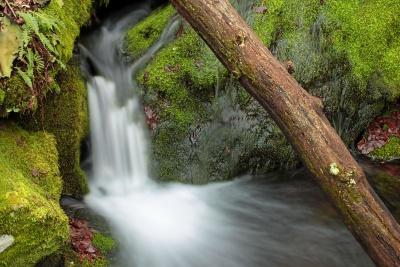 waterfall, water, wood, stream, nature, moss, river, leaf, creek