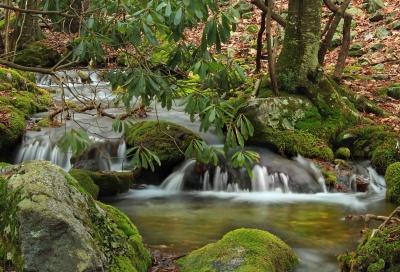 voda, slap, potok, list, prirode, drva, rijeke, stablo, potok