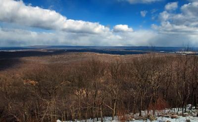 winter, snow, landscape, nature, tree, dawn, cold, field, land