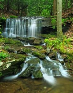 acqua, cascata, fiume, flusso, muschio, foglie, legno, natura, creek