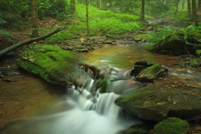 voda, vodopad, drvo, Rijeka, mahovina, tok, priroda, list, potok