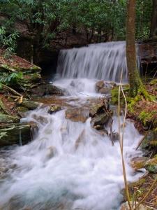 cascata, acqua, fiume, torrente, natura, legno, creek, muschio, paesaggio