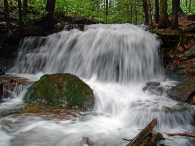 cascada, agua, arroyo, río, naturaleza, creek, madera, musgo, hojas