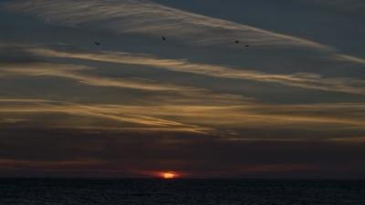 Sonnenuntergang, Wasser, Meer, Dawn, Strand, Sonne, Meer, Himmel, Dämmerung, Seestück