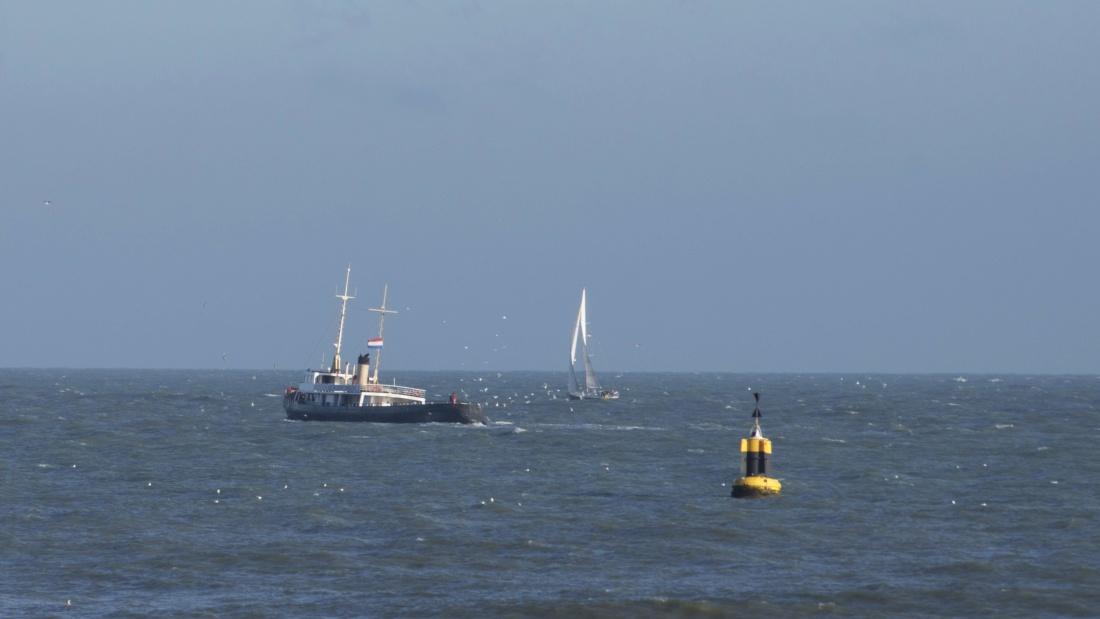 water, sea, watercraft, ship, vehicle, ocean, boat, yacht, sailboat
