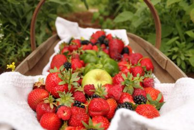 strawberry, fruit, organic, food, leaf, sweet, delicious, summer