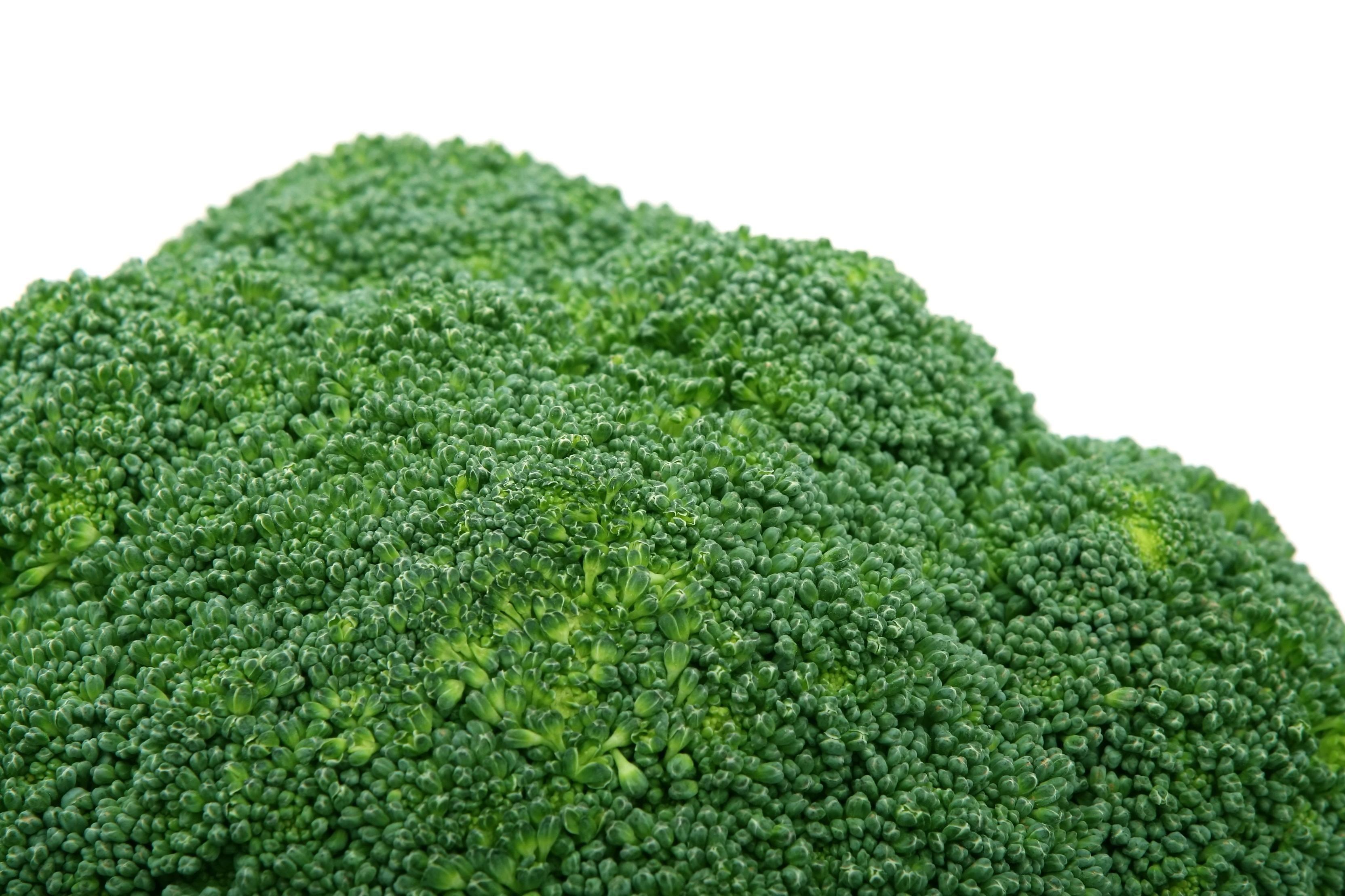 Free Picture Leaf Nature Vegetable Broccoli Flora