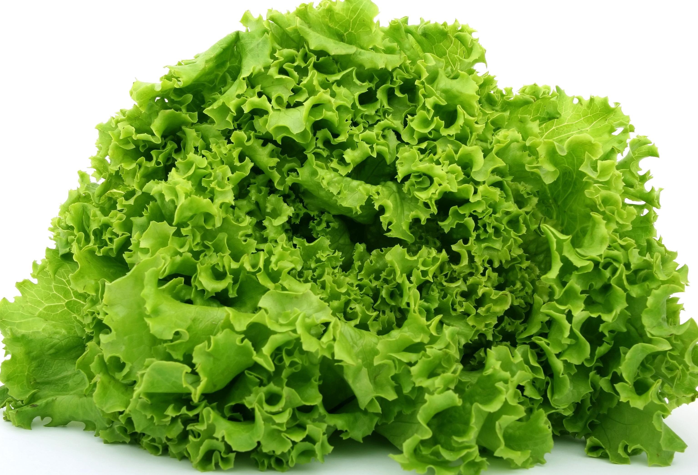 Картинка салатные листья