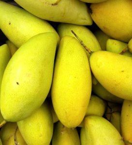 과일, 음식, 영양, 시장, 감귤, 망고