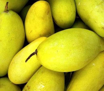fruits, mangue, nutrition, alimentation, agrumes, alimentation, fruits
