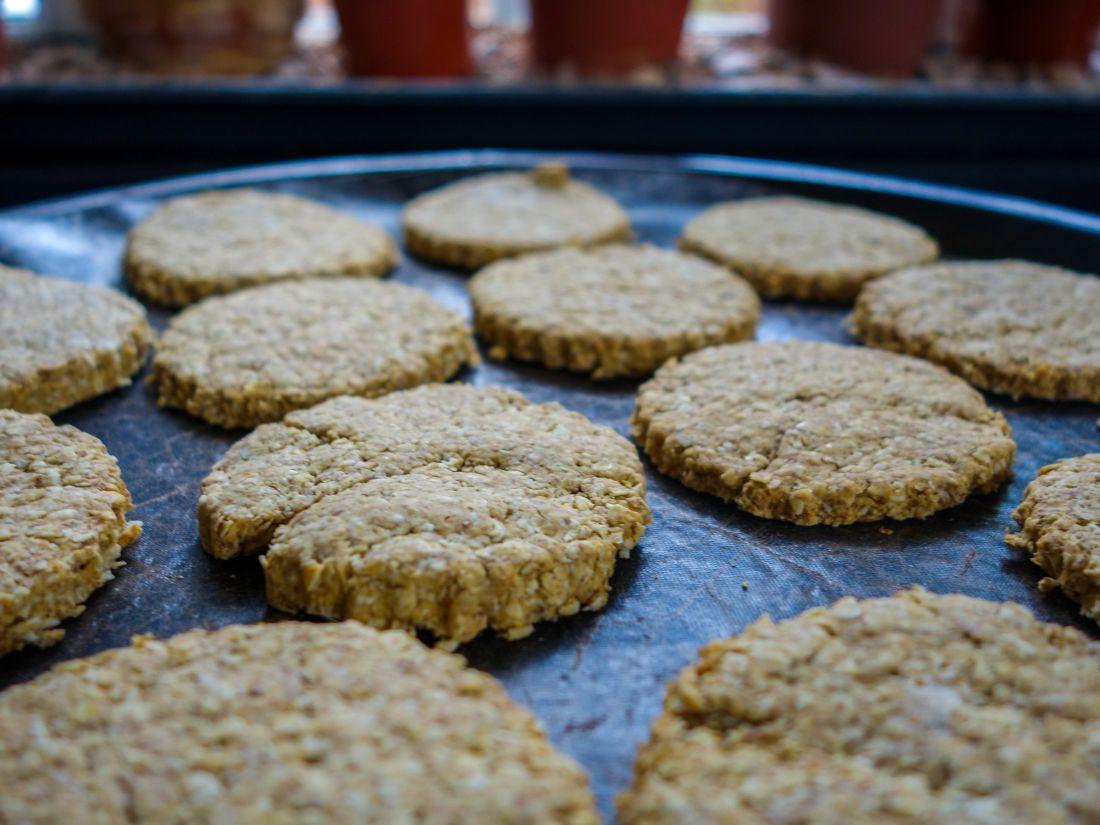 Image libre nourriture biscuit bonbon fait maison - Maison en biscuit et bonbons ...