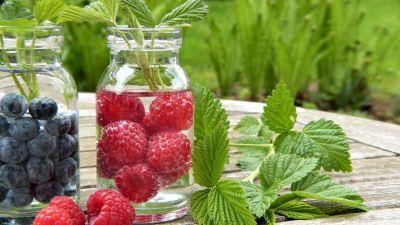 листья, плоды, еда, мята, Берри, сладкий, кустарник