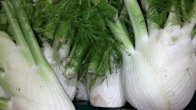 alimentos, vegetales, especias, flora, hoja, naturaleza, raíz