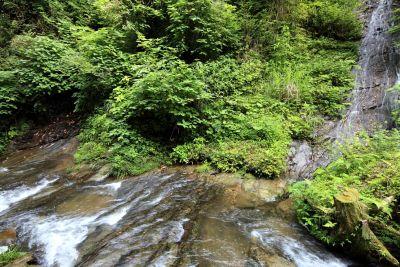 corriente, agua, río, cascada, naturaleza, madera, paisaje, arroyo