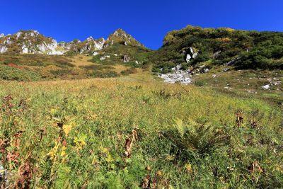 landscape, nature, mountain, sky, summer, meadow, grass