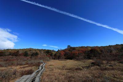 landscape, sky, nature, mountain, hill, daylight, tree, road, wasteland
