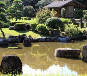 Wasser, Sommer, See, Garten, Garten, Baum, Rasen