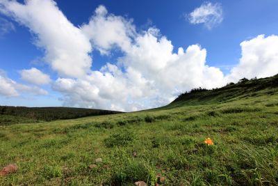 landscape, nature, sky, grass, hill, field, rural, meadow, farm