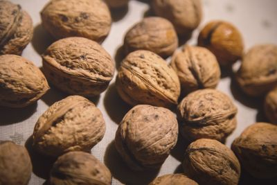 makanan, Singkatnya, walnut, nutrisi, lezat, benih, buah, coklat