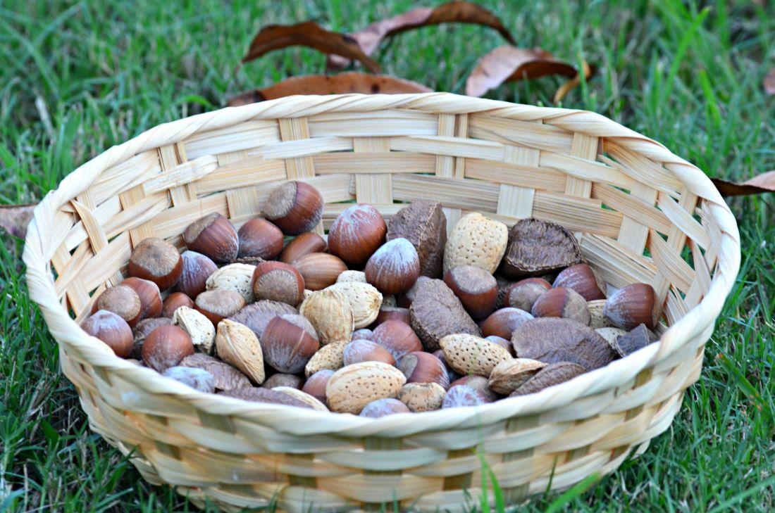 basket, wicker, food, wood, nature, wooden, walnut, fruit, seed