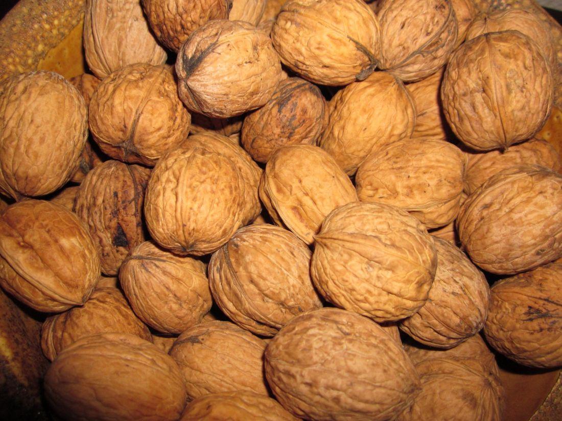 hrane, ukratko, orah, prehrana, školjka, teško, voća, sjemena, smeđa