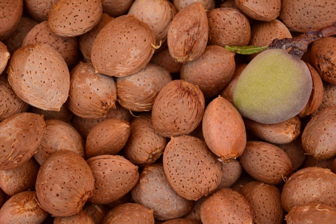 Lebensmittel, Obst, braun, Saatgut, Essen, Ernährung, vitamin