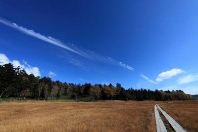 landscape, sky, nature, field, grass, rural, road, meadow, farm
