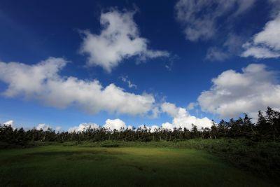 landschap, natuur, lucht, gras, sfeer, veld, weide, landelijk