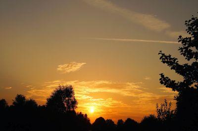 залез, зората, дърво, пейзаж, силует, небе, слънце, звезда
