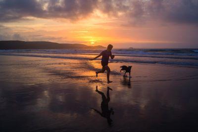 sunset, water, dawn, beach, backlit, dusk, sea, sun, ocean, silhouette