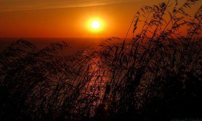 puesta de sol, amanecer, sol, paisaje, silueta, atardecer, naturaleza, cielo, estrella