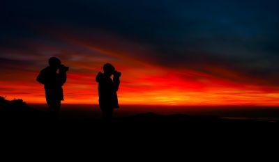 coucher de soleil, silhouette, aube, rétro-éclairé, soleil, crépuscule, ciel, étoiles, lever du soleil