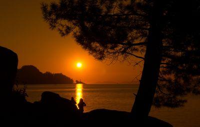 sunset, dawn, silhouette, backlit, dusk, water, sun, beach, landscape