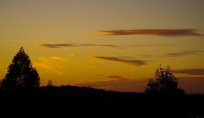 coucher de soleil, aube, paysage, arbre, soleil, silhouette, brouillard, étoile, ciel