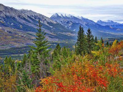 Berg, landschap, natuur, hout, boom, sneeuw, hemel, bos